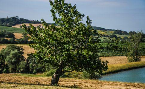 Où dormir dans le Gers en Occitanie ?